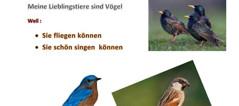 ClipArt-Bild mit Vögeln