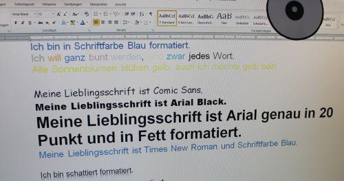 Formatierungsbeispiele im Programm Word