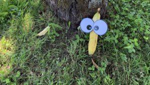 Augenfoto: Eine Banane vor einem Baumstamm mit aufgeklebten Augen
