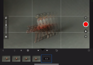 Stop Motion Studio App, Aufnahmeansicht